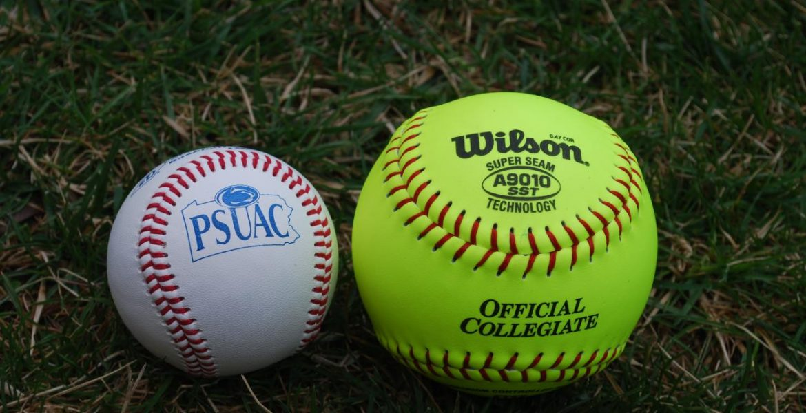 baseball or softball comparison and contrast Free essays on baseball vs softball  search  comparison and contrast essay comparison and contrast essay topic: baseball vs basketball no matter what day it is everyone always wants.