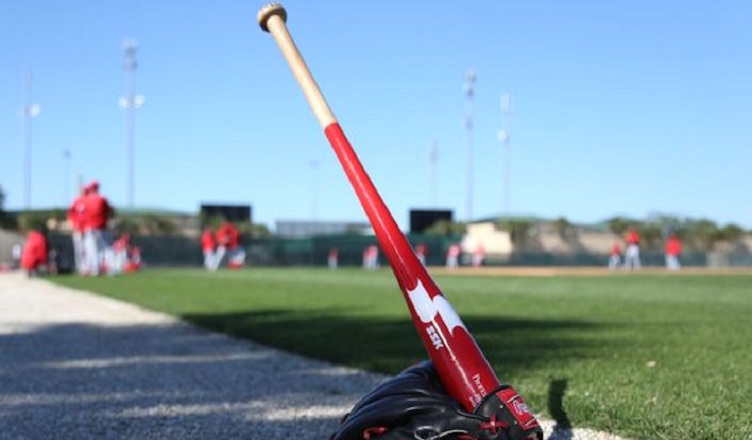 Best fungo baseball bats