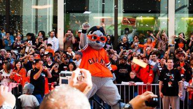 The Top 5 Fan Bases of Major League Baseball